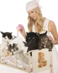 Beth Stern and her cats (L to R) Charlie Boy, Walter, Leon Bear and Apple.